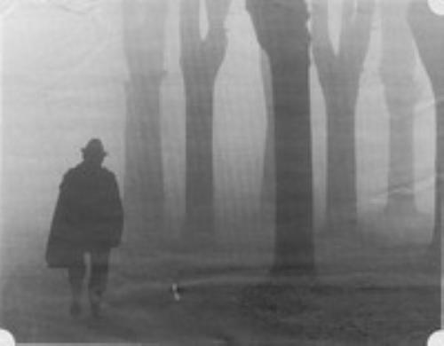 Le cronache dell 39 evoluzione l 39 uomo della nebbia for Planimetrie della caverna dell uomo